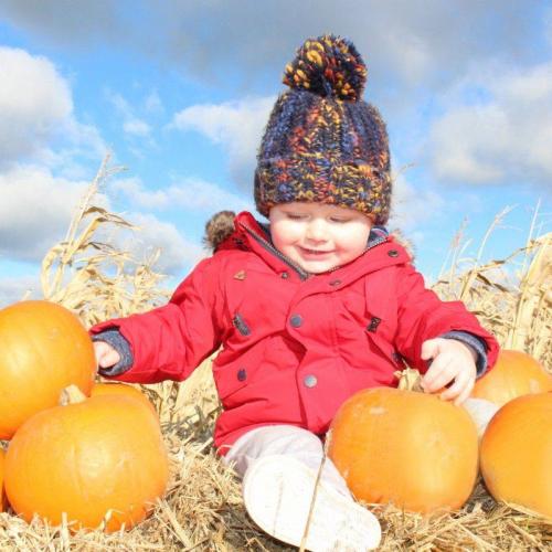 Pumpkin Picking Events